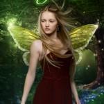 fairyluck